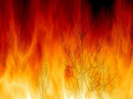 Campofelice di Roccella: anziano muore tra le fiamme