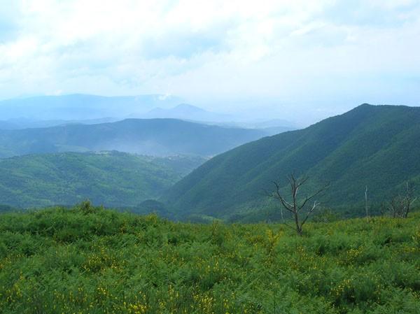 Regione istituisce la figura della guida ambientale