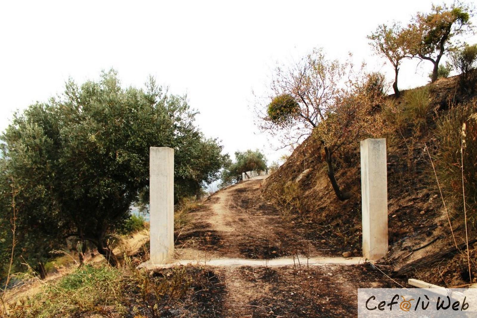 Cefalù Web tra le terre martoriate dall'incendio: Tusa e l'area archeologica di Halaesa
