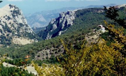 """Nasce il Comitato """" Madonita"""" per promuovere iniziative di salvaguardia e valorizzazione del territorio"""