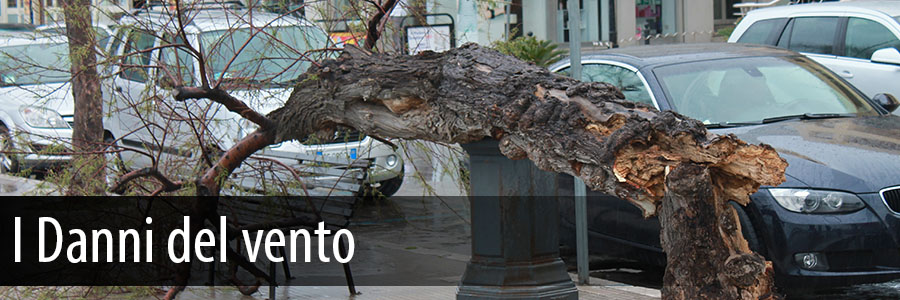 I danni del maltempo a Cefalù - Cefalù Web sul posto - Foto Gallery