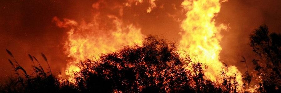Nuovi incendi a Gratteri: che cosa sta accadendo?
