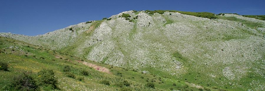 Trekking sulle Madonie: escursione a Monte Cervi
