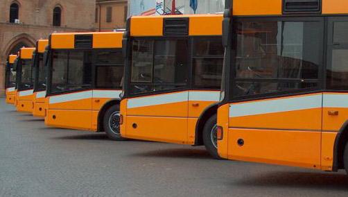 Offerta di lavoro per 115 autisti nei trasporti pubblici