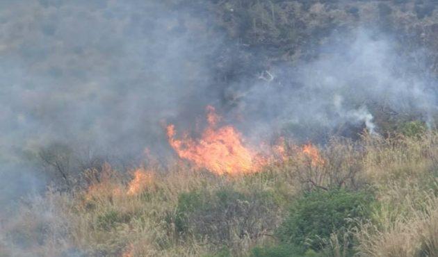 Incendio nella notte a Castelbuono