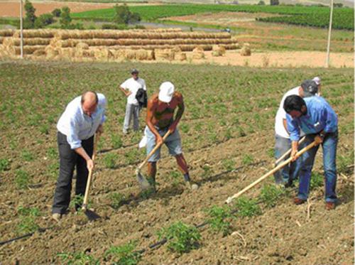 Sbloccati 81 milioni di euro di Fondi PAC per gli agricoltori