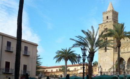 Lapunzina ringrazia i donatori delle palme di Piazza Duomo