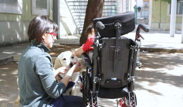 La storia di Francesca e di Light, il cane che assiste i disabili