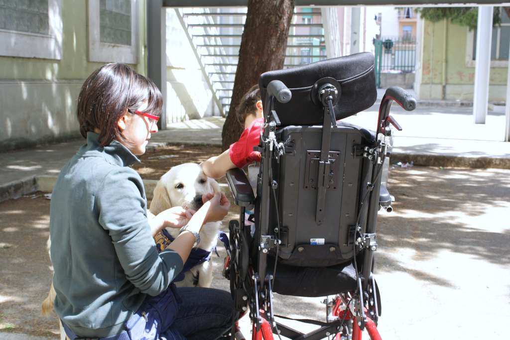 La storia di Francesca e di Light, il cane che assiste i disabili