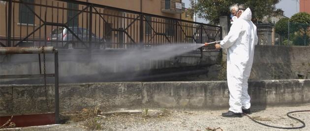 Cefalù, igiene pubblica: disposta dal sindaco derattizzazione e disinfestazione
