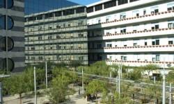 ospedale giglio