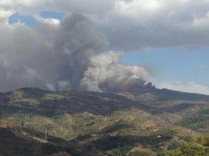 Incendio sulle Madonie, si contano i danni