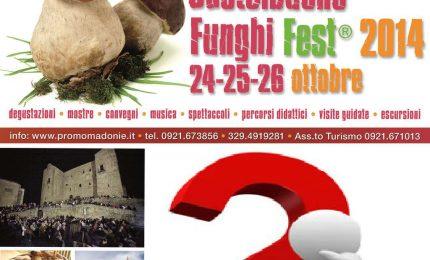"""L'ottava edizione di """"Funghi Fest"""" non si farà"""