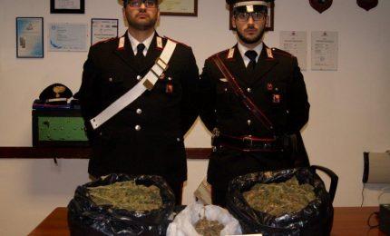 2 kg di marijuana in garage, arrestato dai Carabinieri