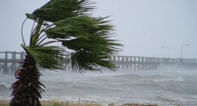 Forte vento a Palermo spezza alberi e fa crollare cornicione