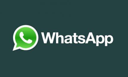 Cura il suo bambino grazie a whatsapp