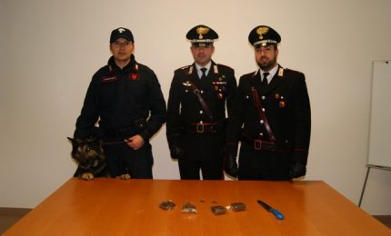 """Smantellato dai carabinieri """"supermarket"""" della droga"""