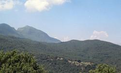 Madonie Rurali Resilienti zone franche montane faggi