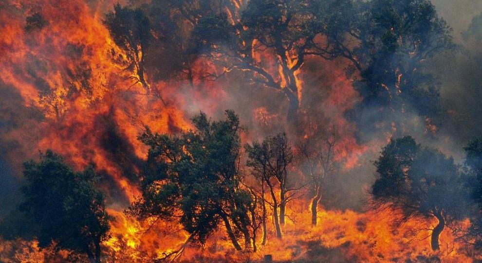 Non serve l'esercito per gli incendi, l'abbiamo già: sono i Forestali