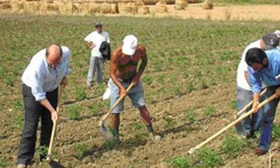 Preoccupanti ritardi nei pagamenti dei contributi agricoli
