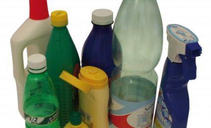 Lotta alla plastica, i pentastellati consegnano borracce agli scolari