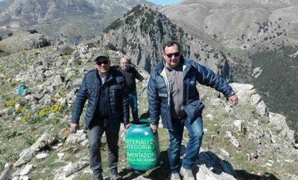 Grifoni nelle Madonie: continua il progetto dell'Ente Parco