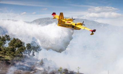 Incendio ad Alimena, spento da Canadair e volontari
