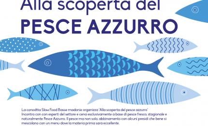 Alla scoperta del Pesce Azzurro a Finale di Pollina