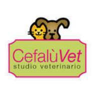 https://www.facebook.com/Cefal%C3%B9Vet-Dott-Cassata-Maria-Concetta-578346192293119/