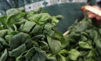 Erba velenosa negli spinaci, ecco i lotti ritirati