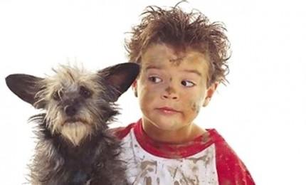 Amici a 4 zampe: quando prendere in casa un cucciolo? E come fare?