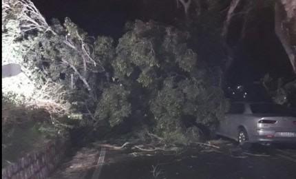 Numerosi danni per il vento a Termini Imerese