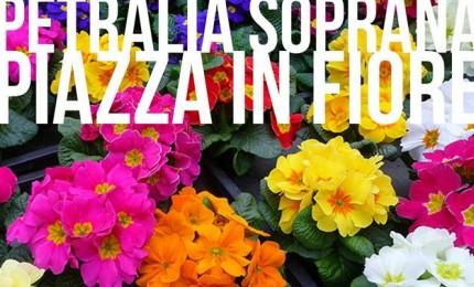 """Petralia Soprana borgo di natura, nuova edizione """"Piazza in fiore"""""""