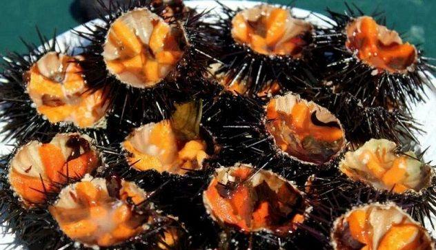La truffa sul piatto: polpa di ricci 'allungata' con le carote