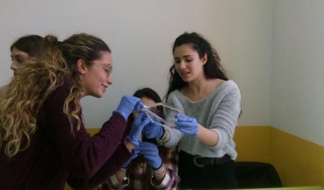 Liceo Classico Cefalù, giornata di orientamento per futuri alunni e famiglie