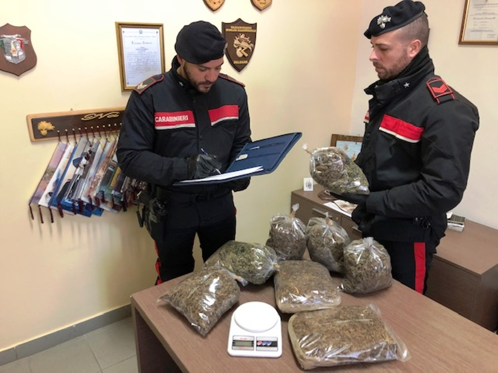 Maxi sequestro di marijuana, in arresto 28enne nigeriano