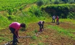 Reinserimento per trenta minori a rischio attraverso l'agricoltura