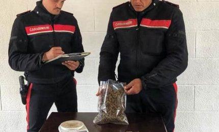 Fermato nigeriano, teneva marijuana nascosta in casa