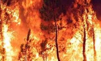 Decine di incendi al primo caldo di stagione