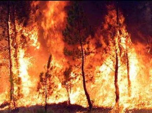 Appicca un incendio, denunciato dai Carabinieri 46enne