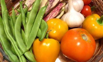 Distretto del cibo, GAL Madonie vuole brand Made in Sicily
