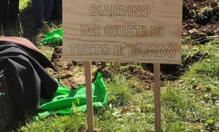 Castelbuono, il circolo PD vuole adottare un giardino