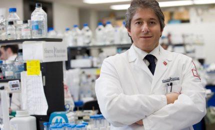 Covid-19, uno scudo genetico avrebbe protetto il Sud Italia: lo studio del Prof Giordano