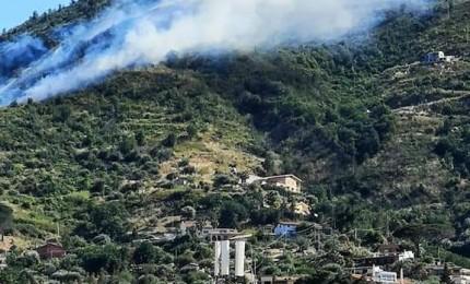Cefalù, incendio in contrada Pisciotto: interviene canadair (FOTO)