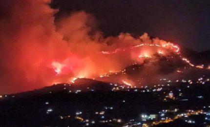 Notte di fuoco in Sicilia: roghi da Altofonte a Pollina, minacciata anche la riserva dello Zingaro